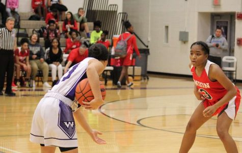 Menelisia McGee sets up the offense for the Wolves against Union.