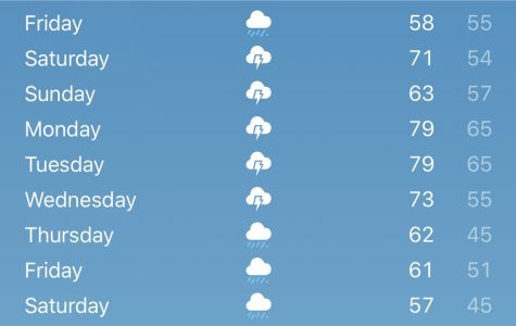 Michigan's Rollercoaster of Weather